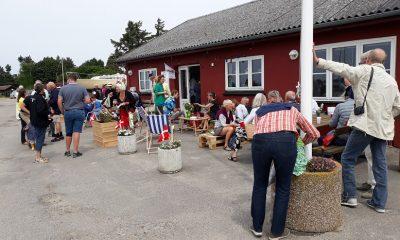 Hårbølle Havn loppemarked og koncert