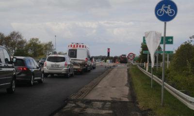 afkørsel 41 Mønsvej Stensved trafikkø køer