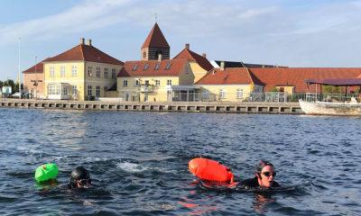 Havsvømning i Stege Havn på Møn