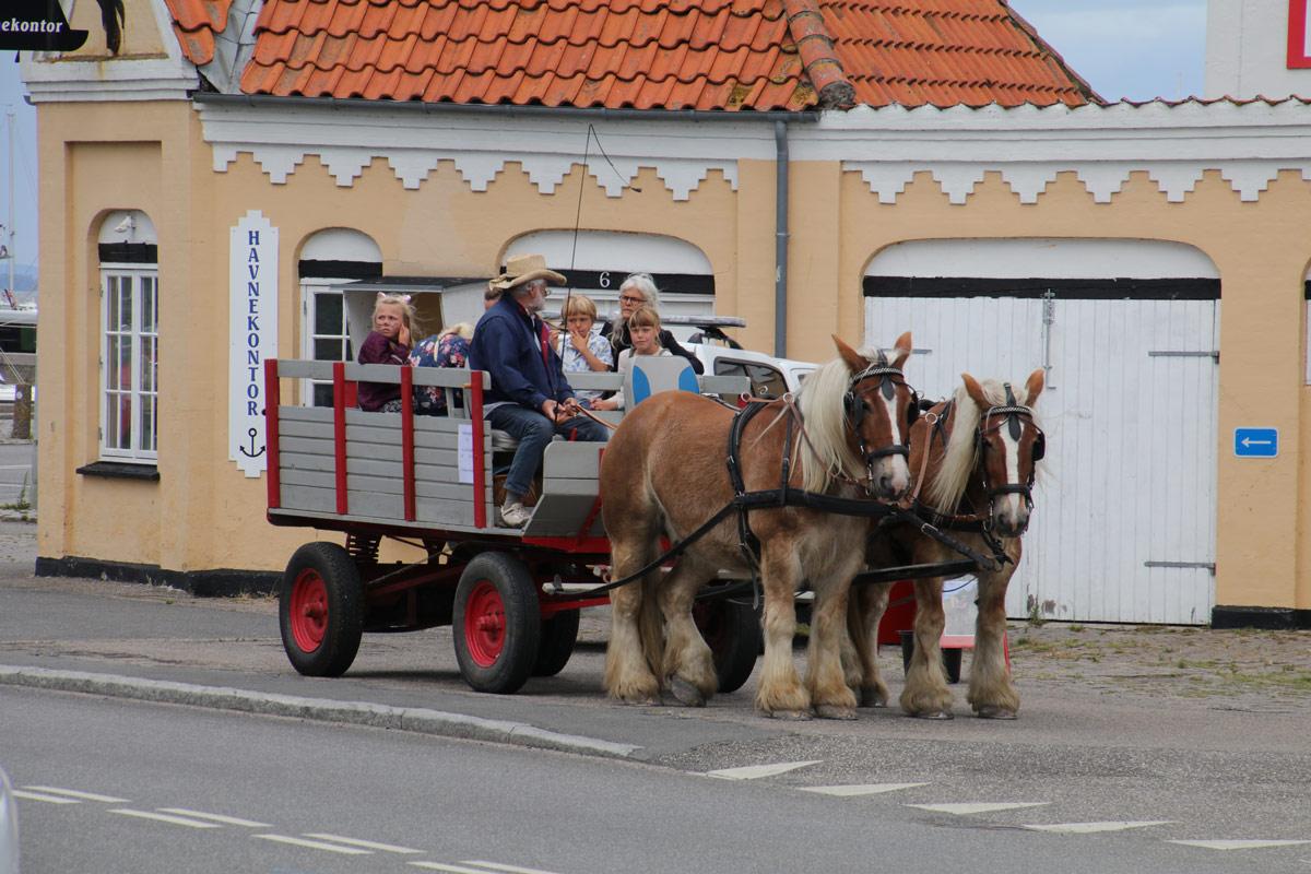 Stege-Marked-Møn-hestevogn 2020-gågade-IMG_6623