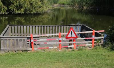 Kvicklysøen-platform-defekt-Vordingborg-fugleliv-IMG_7251