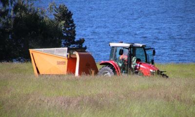 vintersbølle strand græsslåning traktor grønthøster